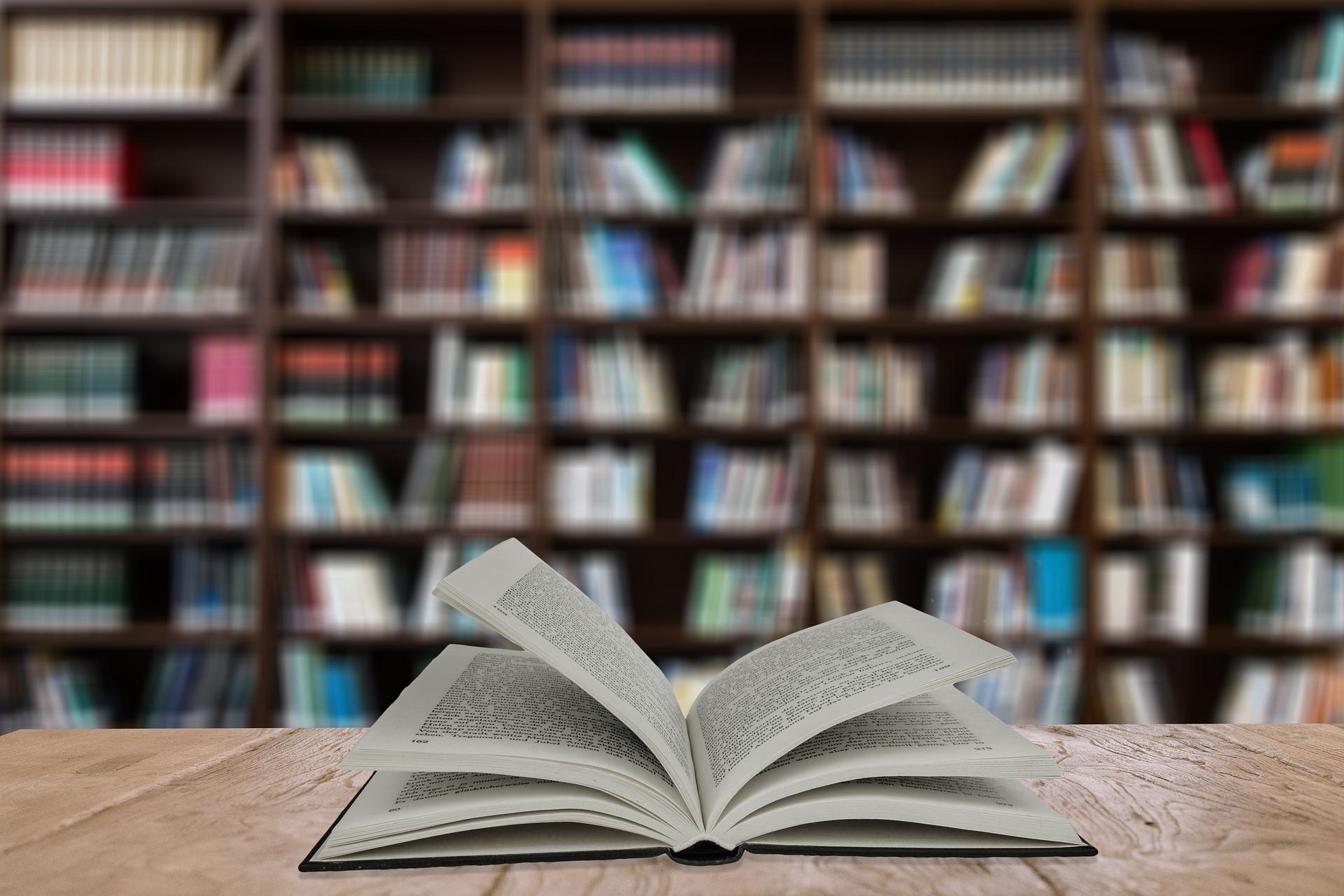 吉林大学莱姆顿学院国际本科2021招生简章
